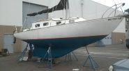 Hull #395 - Agape