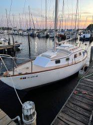 Hull #321 - Coqui